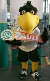 DFB-Maskottchen Paule